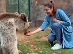 सिंघम की एक्ट्रेस ने बर्थडे पर भालू को फल और मगरमच्छ को खिलाया मीट, शेरों संग लगाई दौड़- देखें Video