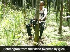 VIDEO: इस शख्स ने बनाई पेड़ पर चलने वाली बाइक, एक लीटर पेट्रोल से चलेगी इतना