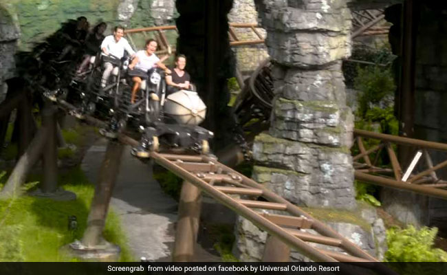 Fly Through The Forbidden Forest On This New 'Harry Potter' Roller Coaster