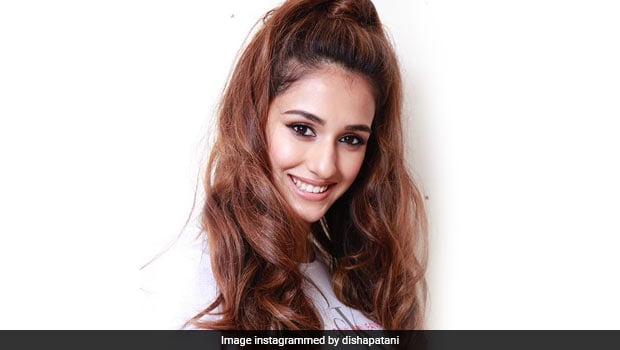 Watch Video: Disha Patani Celebrates Her Birthday With Some Delightful Cakes
