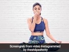 International Yoga Day 2019: शिल्पा शेट्टी और मलाइका अरोड़ा ने सिखाए योग के गुर, देखें Video