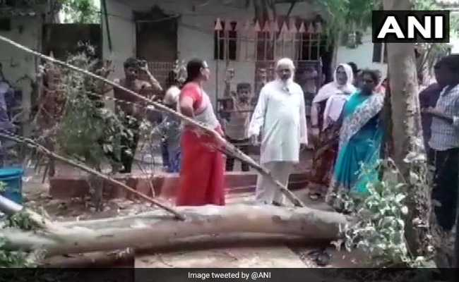 Six-Year-Old Dies After Tree Branch Falls On School Roof In Andhra Pradesh
