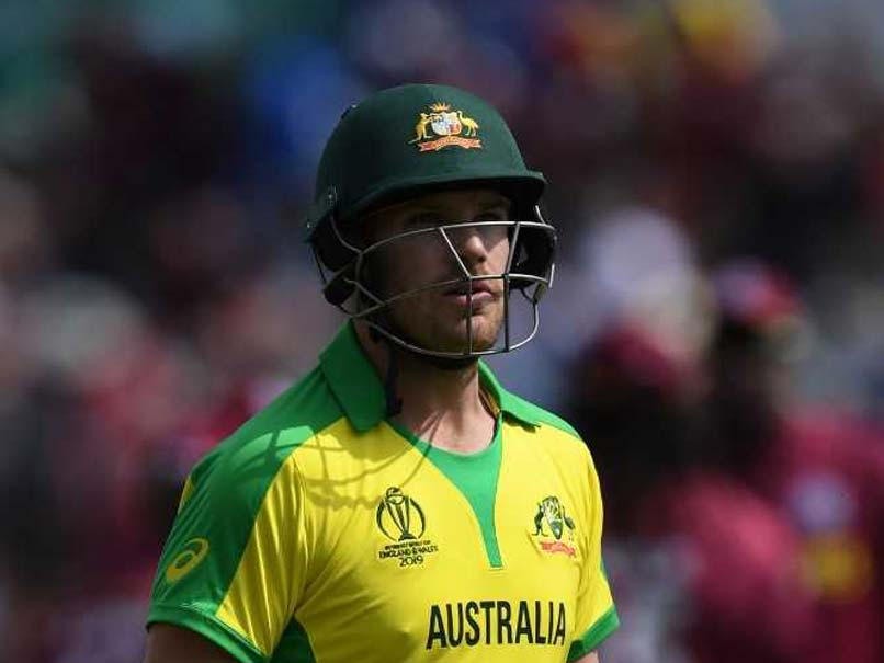 World Cup 2019: David Warner was under pressure in front of Indian bowlers