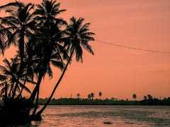 Lakshadweep Changes, Blamed On New Administrator, Trigger Outcry