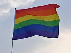 US Embassies In Delhi, Chennai Show Pride Flags Despite Washington's Note