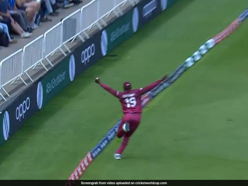 Sheldon Cottrell Takes Unbelievable Catch To Dismiss Steve Smith - Watch
