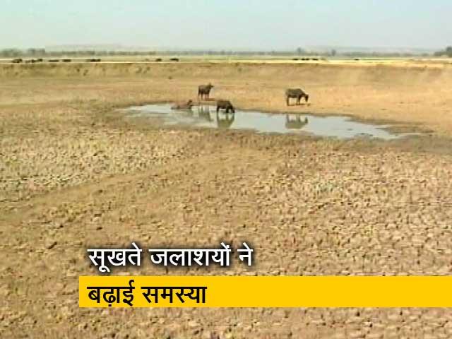 Video : पानी की समस्या से जूझते देश भर के जलाशय