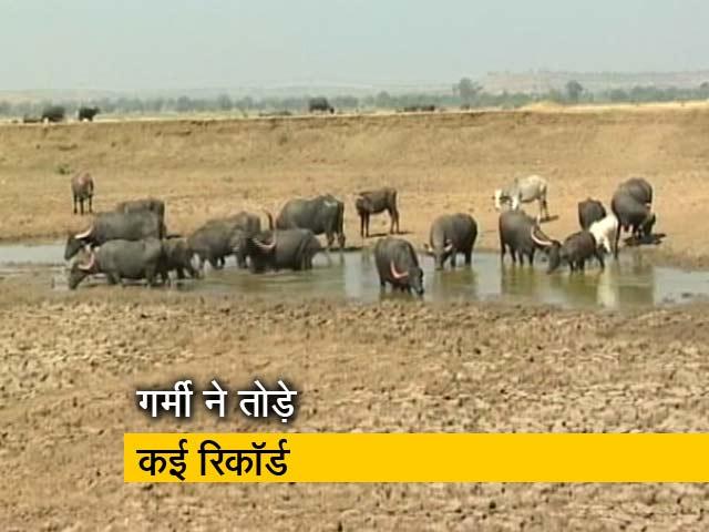 Video : दुनिया में सबसे गर्म हिंदुस्तान!