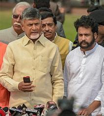 'Control Your Pet Dog Or...' TDP Lawmaker's Hint To Chandrababu Naidu