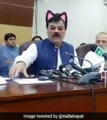 Pak Minister Accidentally Shown With Cat Ears On Facebook Live Streaming
