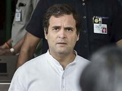 """Who Paid Jamia Shooter?"" Rahul Gandhi Questions Delhi Firing"