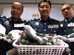 2 Indian Men Attempt To Smuggle Over 5,000 Terrapins To Malaysia, Busted