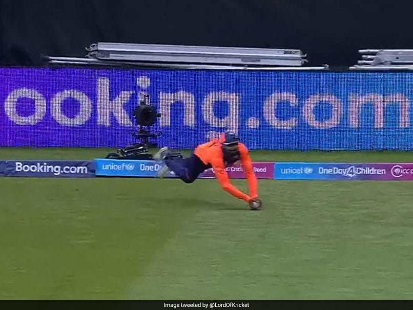 India vs England: Ravindra Jadeja Takes Wonder Catch To Dismiss Jason Roy