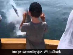 मछली के लिए फंसाया जाल और अचानक आ गई शार्क, पानी से निकलकर किया ऐसा... देखें VIDEO