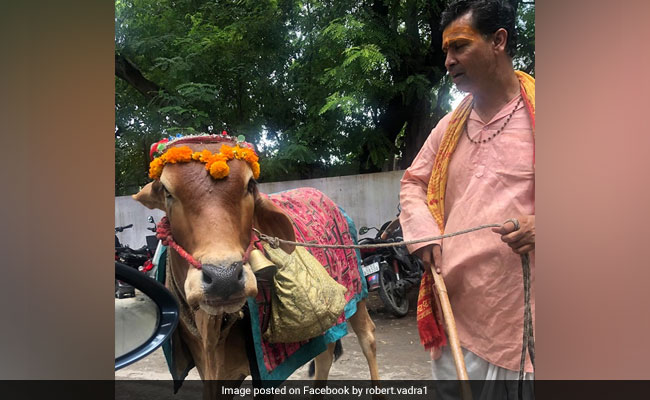 'Know Your Future From Sacred Cow': Robert Vadra On Facebook Video
