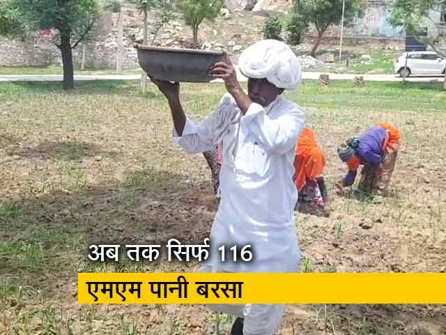 Videos : राजस्थान के 12 जिलों में 60 से 80 फीसदी कम बरसात