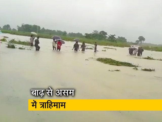 Video : असम में बाढ़ से हाहाकार, काजीरंगा नेशनल पार्क में घुसा पानी