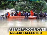 Video : 43 Lakh Affected As Assam Flood Situation Turns Critical