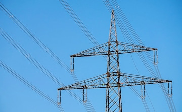"""""""Flying Bats"""" Reason For Glitch In Bhopal Power Supply, Says State Energy Minister"""