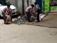 Students Of Delhi Municipal School Seen On Video Working As Labourers