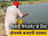 Video : बजट में हुई फिशरी मैनेजमेंट के लिए फ्रेमवर्क बनाने की घोषणा, पंजाब के किसान नाखुश