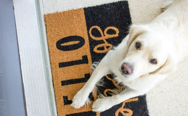 7 Trendy Doormats To Add A New Look To Your Home