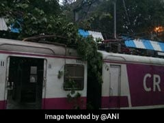 Suburban Train Services Hit After Tree Branches Fall On Mumbai Local