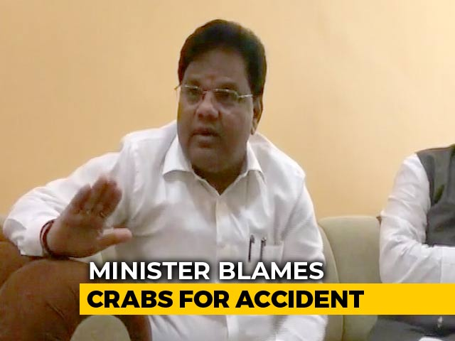 Video : Maharashtra Minister Blames Crabs For Dam Burst That Killed 19
