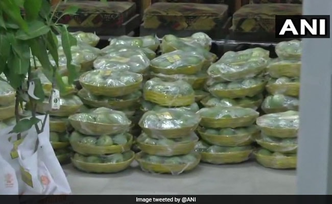 With Gift Of Mangoes, Bihar Minister Makes Plea To 'Save The Environment'