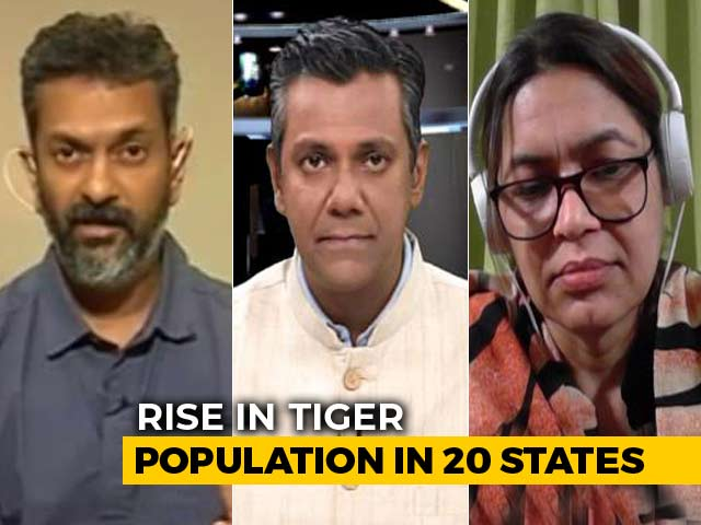 Video : 33% Rise In Tiger Numbers: Is The National Animal Now Safe?