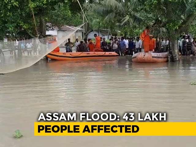 Video : 43 Lakh Affected, 95% Of Kaziranga Park Flooded In Assam