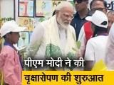 Video : पीएम मोदी ने वृक्षारोपण कर पर्यावरण संरक्षण का दिया संदेश