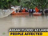 Video : 43 Lakh Affected, 95% Of Kaziranga Park Flooded In Assam