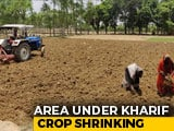Video : With Deficit In Monsoon, Sowing Of Crucial Crops Takes A Big Hit