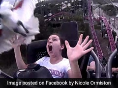 In Dramatic Video, Girl On Rollercoaster Gets Hit On The Head By Bird