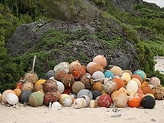 Plastic Junk Spawns Desert Island Disaster In Pacific