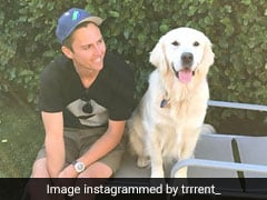 """Will Take Dog For Walk By Beach"": Trent Boult On Coping With World Cup Heartbreak"