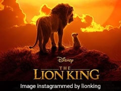 8 Wonderful Picks Fans Of <i>The Lion King</i> Will Adore