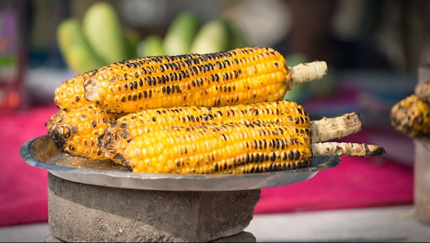 Health Benefits Of Corn Or Bhutta: 6 Benefits Of Eating Daily Corn During Rainy Days, Bhutta Khane Ke Fayde