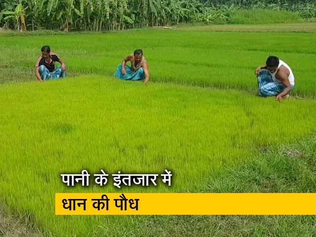 Video : रवीश कुमार का प्राइम टाइम: सिंचाई के लिए पानी कब तक खरीद पाएंगे?