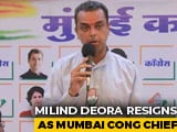 "Video : Mumbai Congress Chief Quits Post In ""Solidarity"" With Rahul Gandhi"