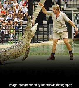 Steve Irwin S Son Recreates His Iconic Crocodile Pic After 15 Years