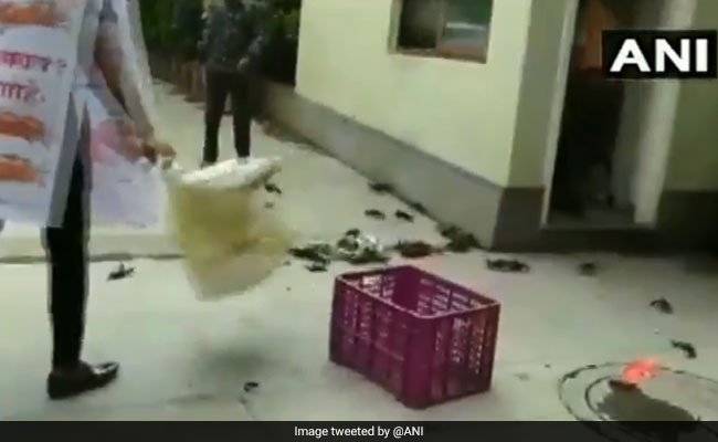Crabs Thrown At Maharashtra Minister's Home Over Dam Breach Remark