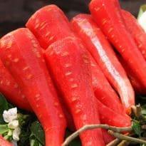 Carrot Benefits: गाजर के फायदे कर देंगे आपको हैरान! पाचन, हार्ट, आखों, बालों के अलाव कई फायदे