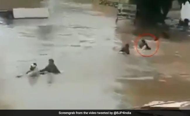 After Minister's Flood Selfie, BJP Video Shows Him Swimming To Village