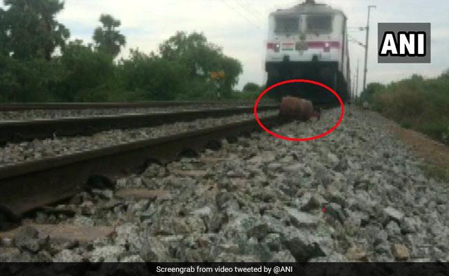 Viral Video बनाने के लिए शख्स ने रेलवे ट्रेक पर रख दिया गैस सिलेंडर, पुलिस ने किया फिर ऐसा