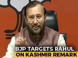 "Video : ""Wayanad Win Changed Mindset"": Minister On Rahul Gandhi's Kashmir Remarks"