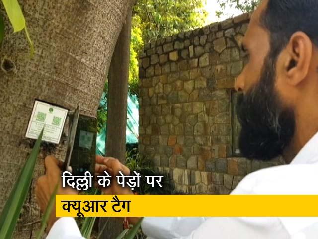 Videos : हैरिटेज पेड़ों पर NDMC लगा रहा QR टैग