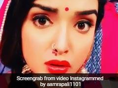 Bhojpuri Cinema: आम्रपाली दुबे के एक्सप्रेशंस ने सोशल मीडिया पर बरपाया कहर, Video देख पलके झपकाना भूल जाएंगे आप