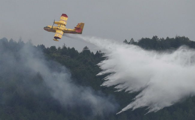 Fierce Wildfire Stopped In Southern France, 500 Firefighters Were On Spot